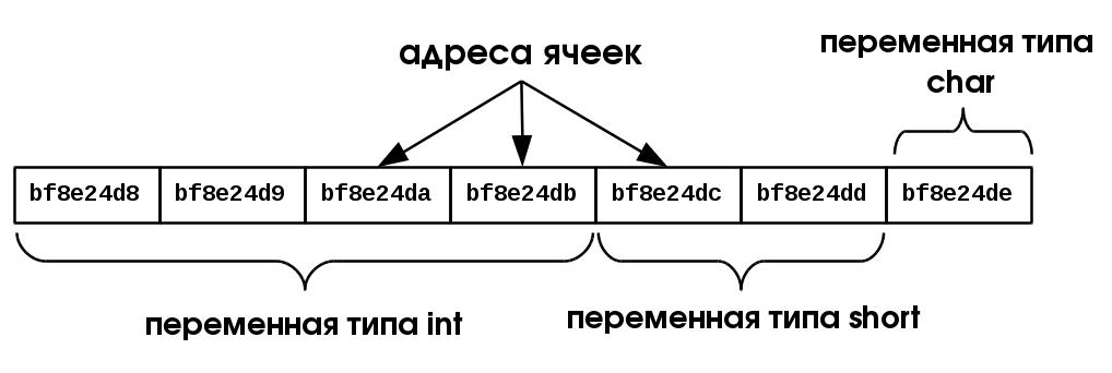 Представлены данных в программе 10.1